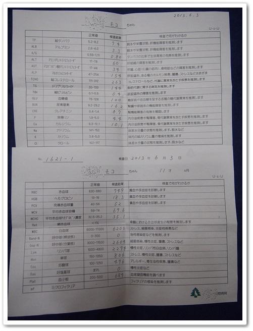 20130607_001.jpg