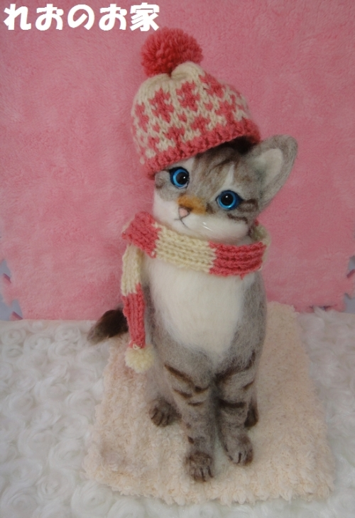 寒がり猫1