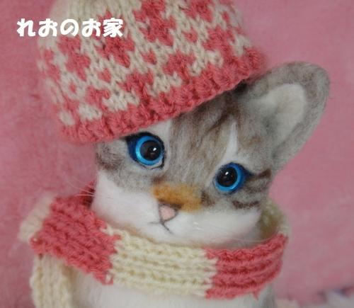 寒がり猫4
