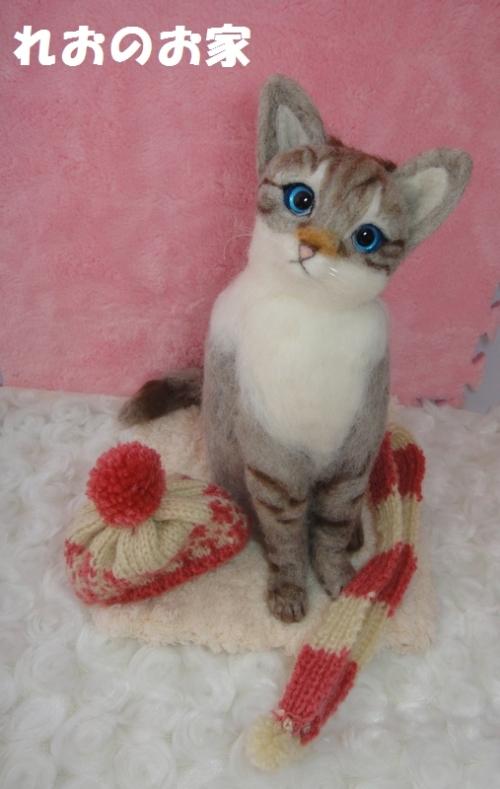 寒がり猫5