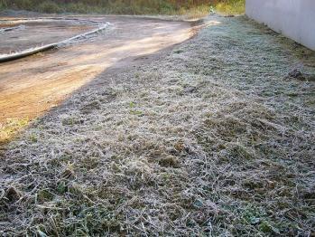 霜が・・・