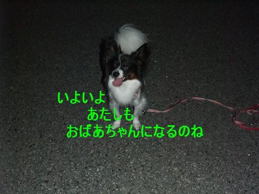 2013_1009モージョファミリー0009