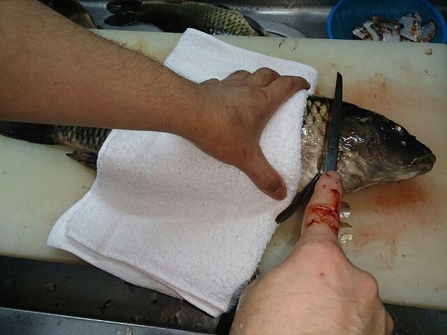 鯉の頭切り落とし