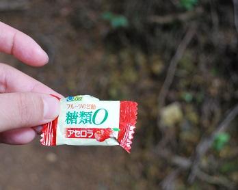 伊豆ヶ岳13