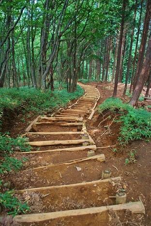 伊豆ヶ岳31