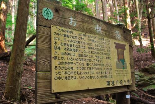 伊豆ヶ岳39