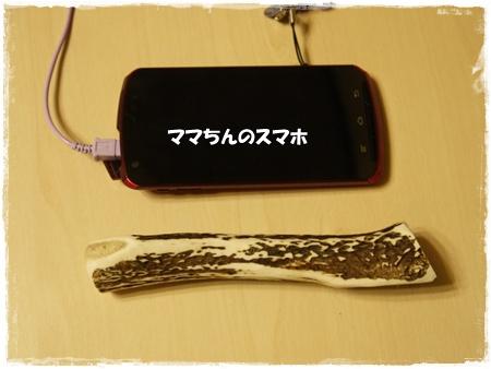 P1140518こ