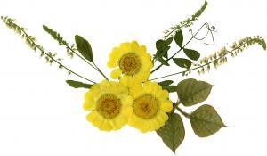 bouquet_004_convert_20130730100104.jpg