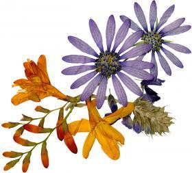 bouquet_008_convert_20130428062725.jpg