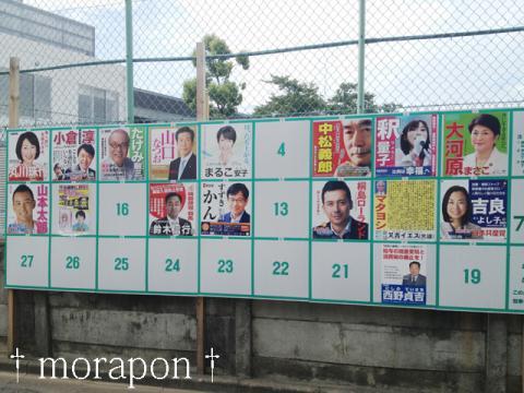 130721 参院選2013