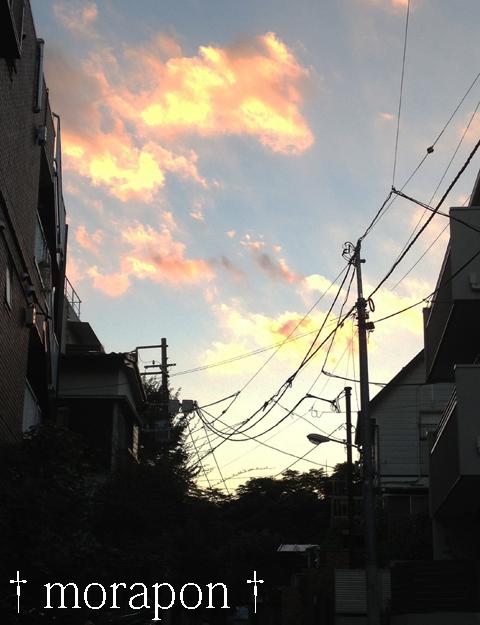 130927 秋晴れの夕散歩-3