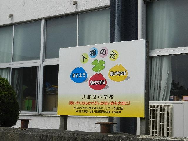 八郎潟小学校花植え 003