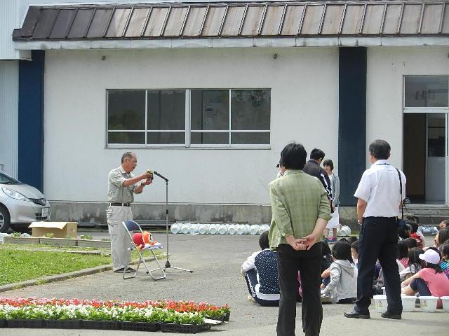 八郎潟小学校花植え 002