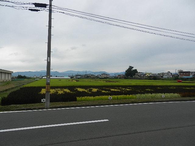 商工ゴルフコンペ(青森) 081