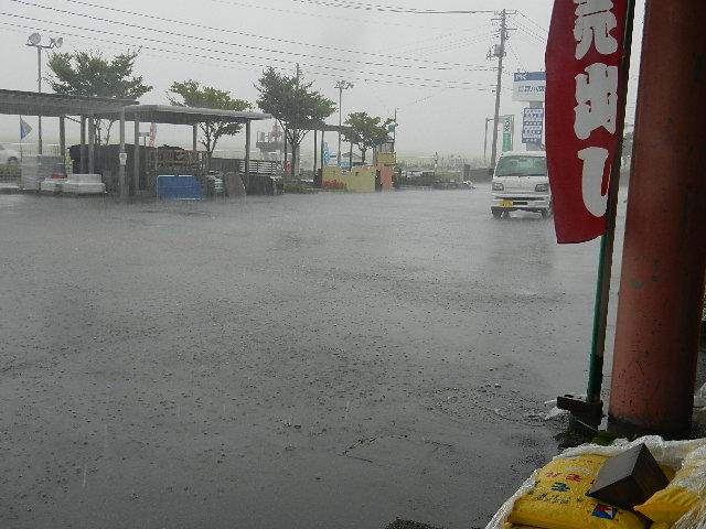 大雨2 005