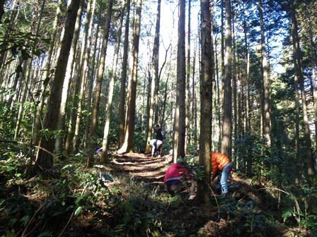 森のたね 山の神 掃除