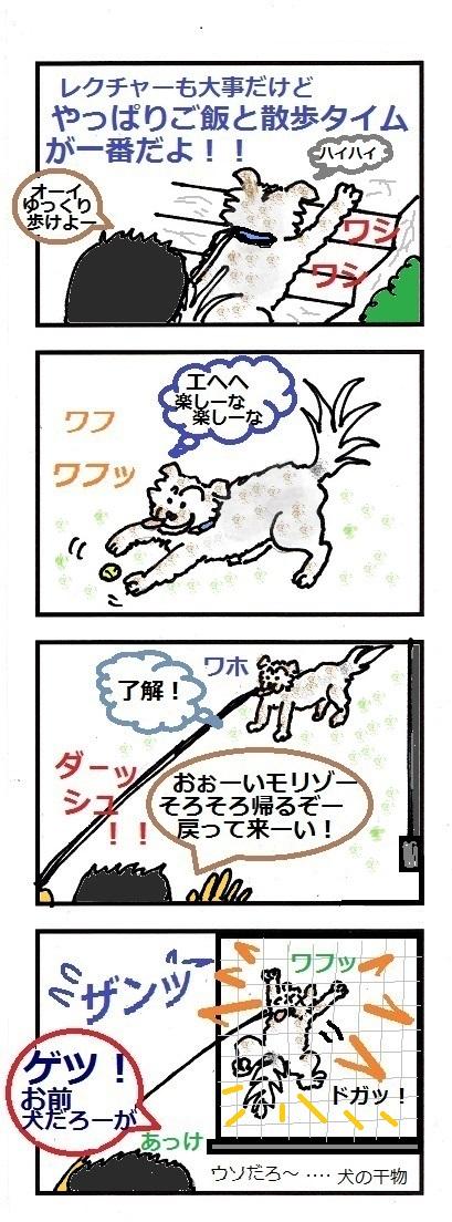 モリゾーちん 7-⑦