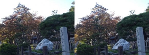 長浜城②(平行法)