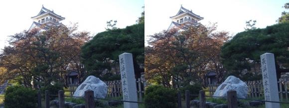 長浜城②(交差法)