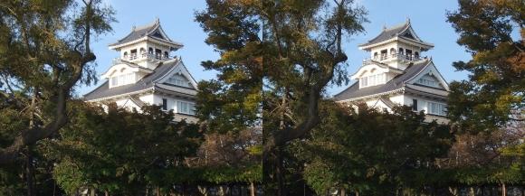 長浜城①(交差法)