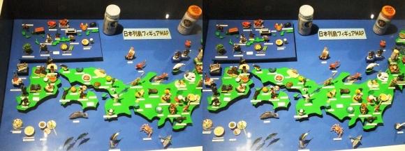 龍遊館 日本列島フィギュアMAP(平行法)