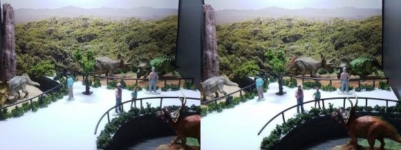 龍遊館 トリケラトプス・パーク(平行法)