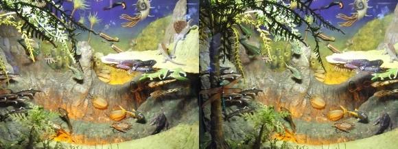 龍遊館 太古の水中生物①(交差法)