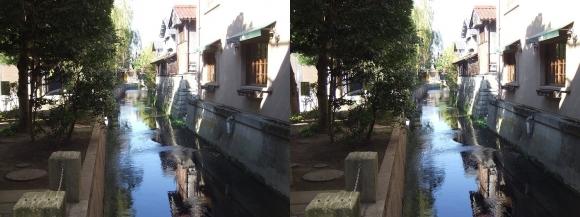 長浜大手門見返り橋からの米川(平行法)