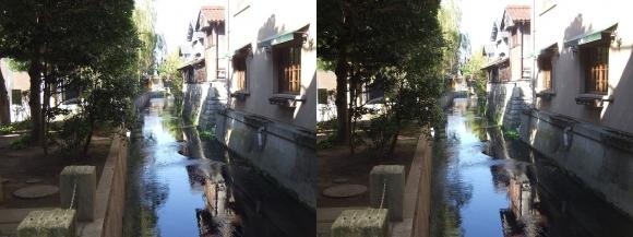 長浜大手門見返り橋からの米川(交差法)