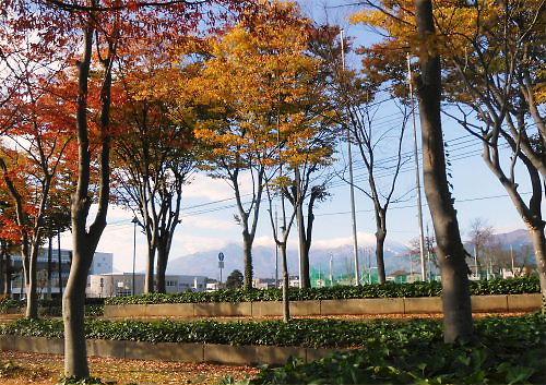 11 500 20141106 妙高連山behind市民体育館overview