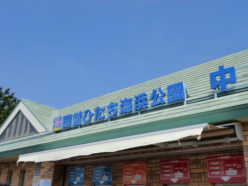 国営ひたち海浜公園・1