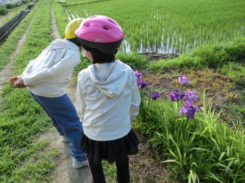 親子でサイクリング日和・5