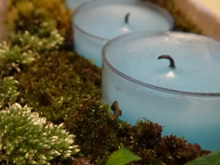 moss candle2