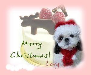 lovy521_card_fuchi.jpg