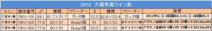 久留米産 2013ライン表