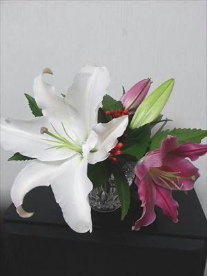 正月の花1_R