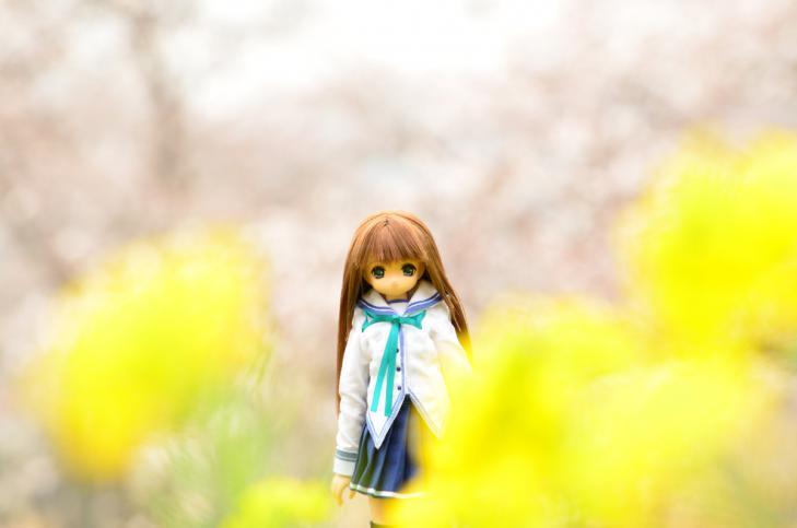 05DSC_3907.jpg
