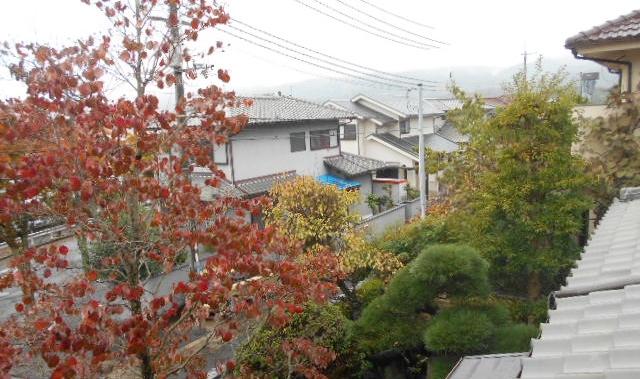 窓からの町②
