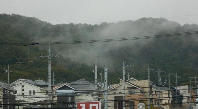 矢田丘陵の雲海
