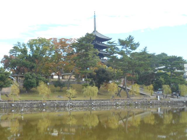 猿沢の池から5重の塔