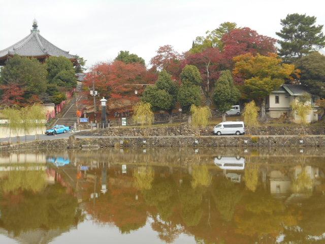 猿沢の池に映る紅葉