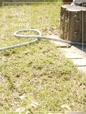 grass08.jpg