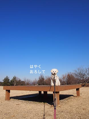 140112_3.jpg