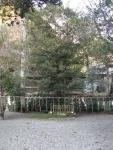 丹生川神社・下社08