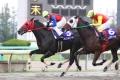 2011.11 北国王冠 レース 2