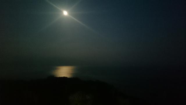 幻想的な海月夜