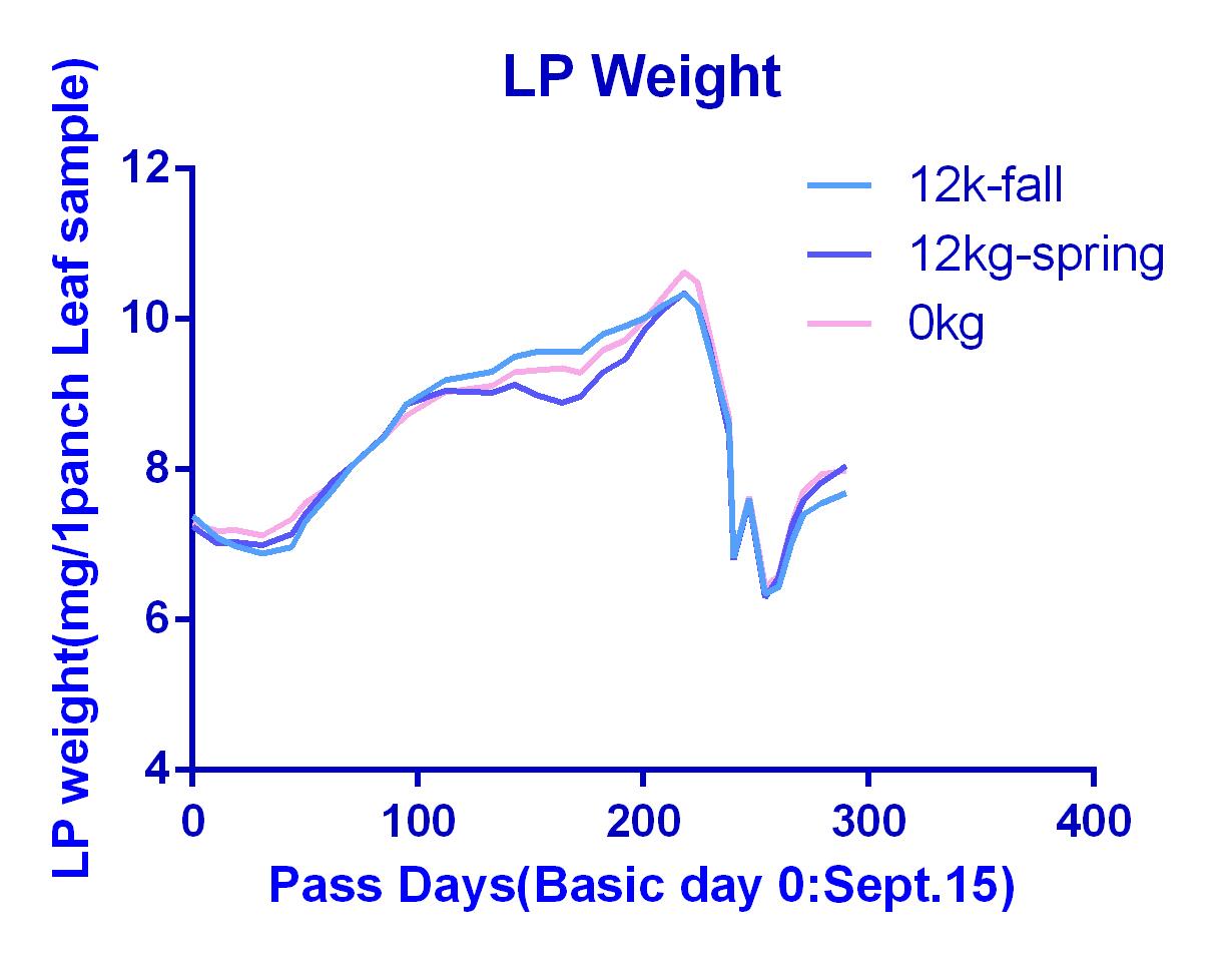 LP Weight 12kg