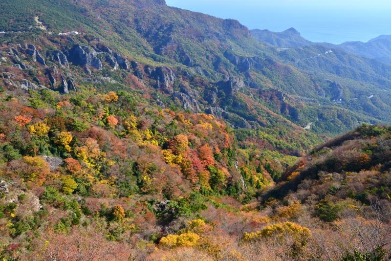 寒霞渓紅葉3 (香川県 小豆郡 小豆島)
