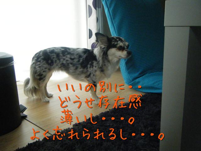 kako-OQrzX7wAdRTk8Yxe.jpg
