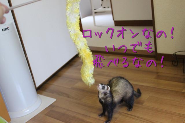 kako-lDd6l8dUhVn76Ui2.jpg
